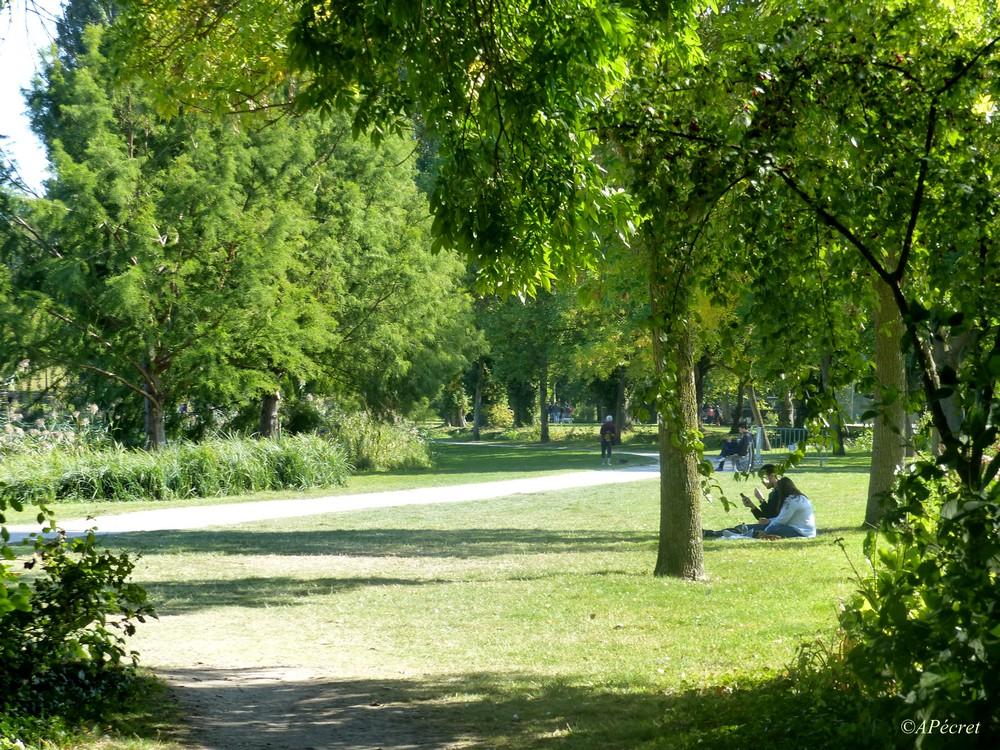 Notre parc en ce premier jour de l'automne