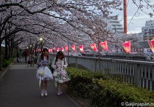 Les lieux qu'on aimerait visiter au Japo,