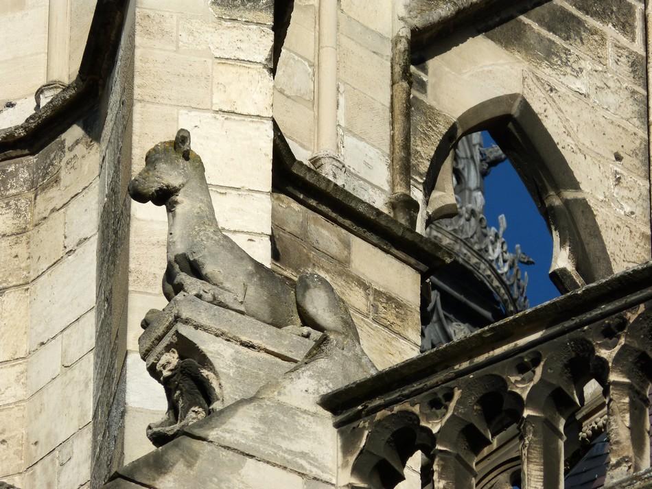 Les gargouilles de la Dame d'Amiens