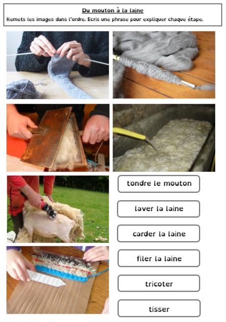 Chronologie du mouton au tricot