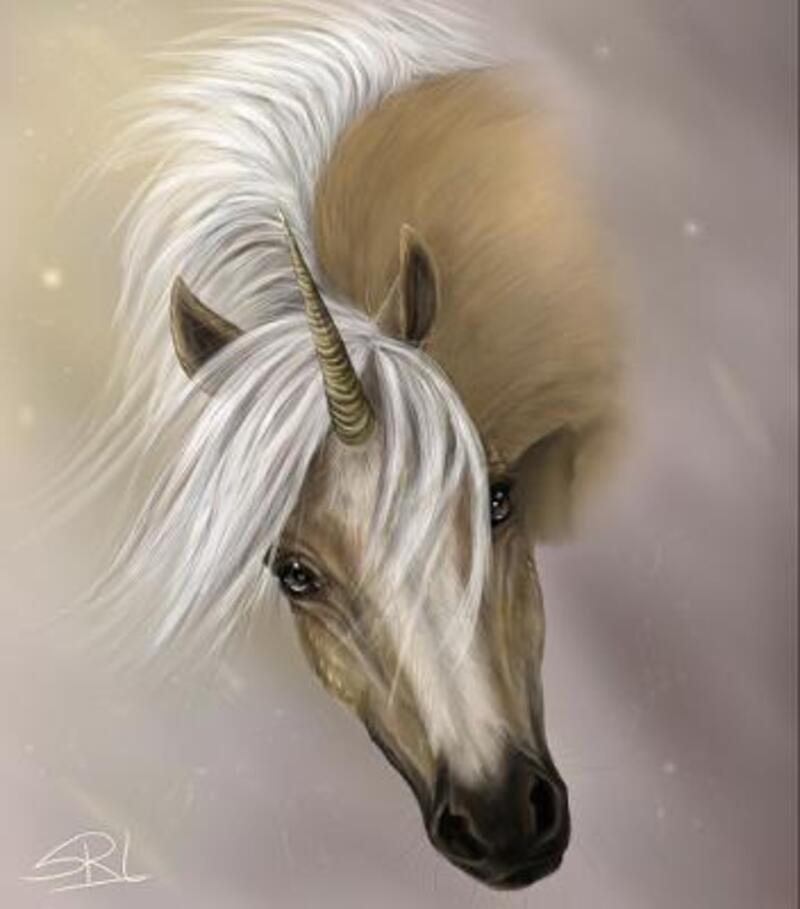 Belles licornes