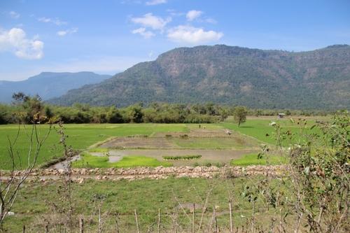 Le Vat Phou
