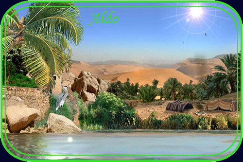 PPS Oasis