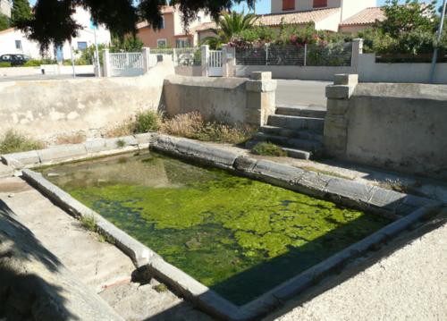 Aude - La Palme