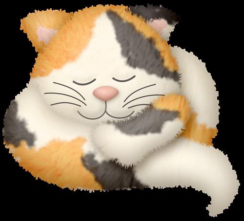 Défi 84 : Le chat dort (Sans jeu de mots ;-))