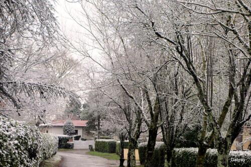 Vieille-Toulouse: sous la neige!