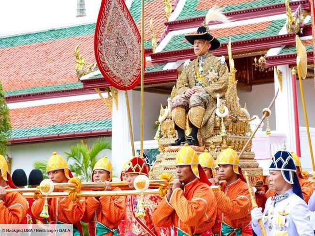 Roi de Thaïlande : cette chasse au chien qui fait polémique