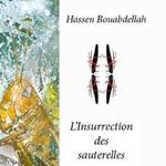 HASSAN  BOUABDELLAH