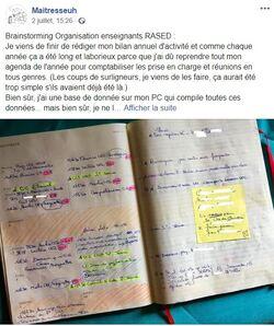 Cahier Journal Agenda Planner Organiseur pour les Maîtres E (RASED)