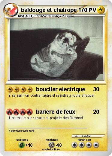 carte pokemon flippinou et autre