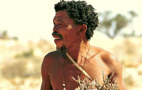 Disparition d'une 'icône' bushman d'Afrique du Sud