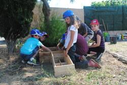 Découvrir les légumes au jardin des sources