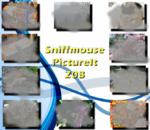 PictureIt 208 - Sniffmouse