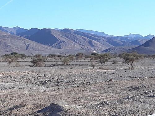 Plaine et collines arides