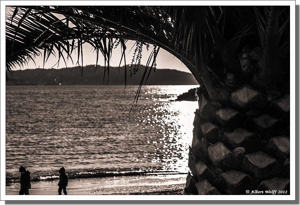 Toulon en hiver (3)