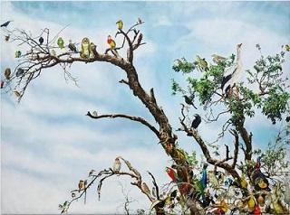 Un oiseau + un arbre = un chant parfait ...