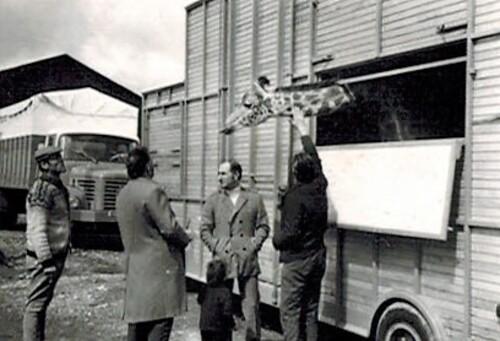 Jean Richard, Willy Meyer et Achille Zavatta aux quartiers d'hiver du cirque Jean Richard le 16 avril 1969
