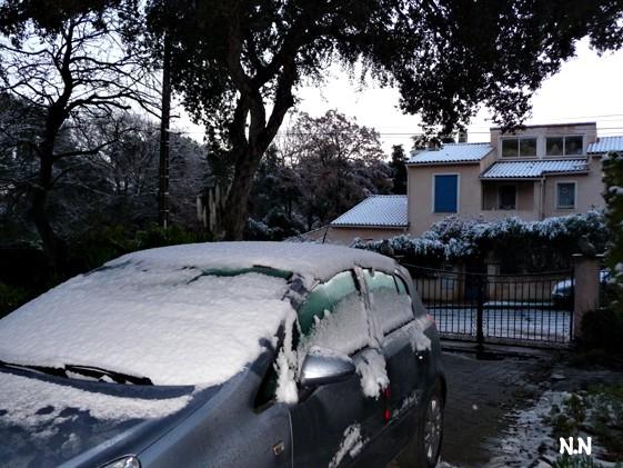 P1020845-reveil-sous-la-neige.jpg