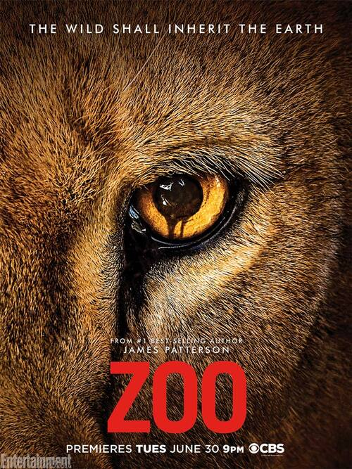 "Bonsoir a l'honneur : "" Zoo """