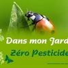 affiche_jardin_coccinelle-copie-1.jpg