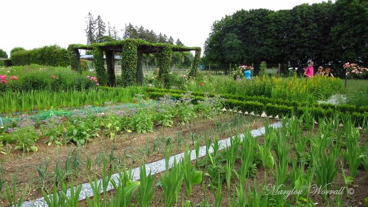 Cheverny : Le parc et les jardins