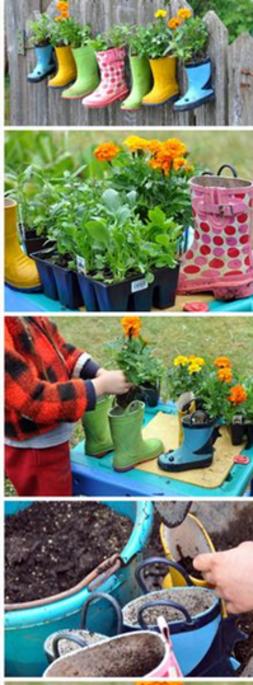 Jardinage et plantation