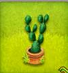 pot de cactus à feuilles