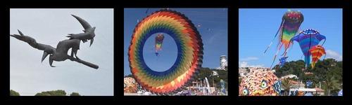 Festival de cerfs-volants : un moment dédié aux bouts de chou