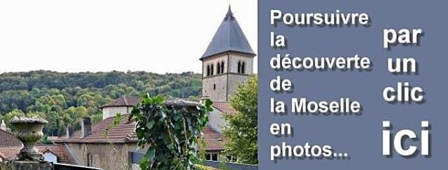 Bandeau suite Moselle 28 01 2010