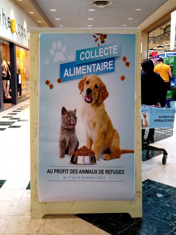 Zen et Zoo a participé à à la collecte alimentaire pour les animaux de refuges