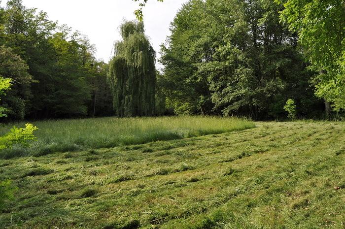 - Bref clin d'oeil sur la permaculture -
