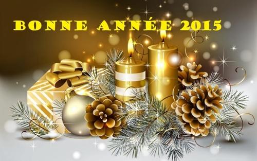 Heureuse Année 2015.