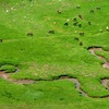 Les eaux coulent, serpentant vers l'Escalé d'Aigue Torte ou Paso de Escalé et l'Océan Atlantique