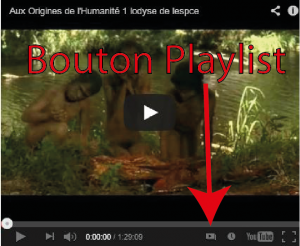 bouton playlist1