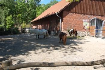 Zoo Duisburg 2012 697
