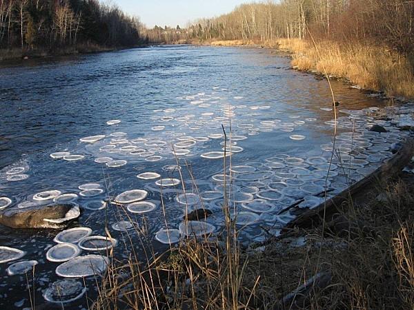 phenomene-riviere-Rimouski-0158.jpg