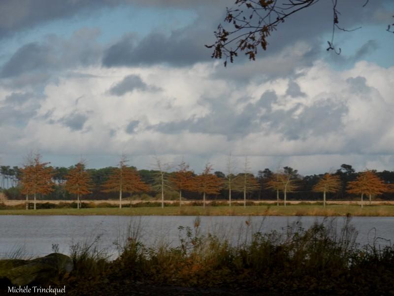 Une balade au Lac de Tastoa le 29 novembre (suite N° 2 et fin)...