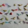 2011-10 oiseaux de noël