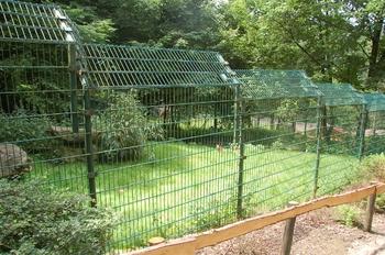 Zoo Neunkirchen 2012 095
