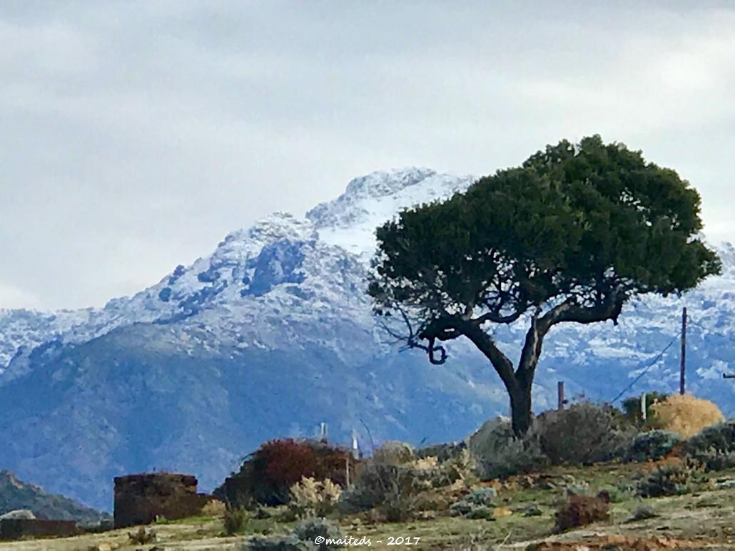 La neige vue de Galéria - Corse