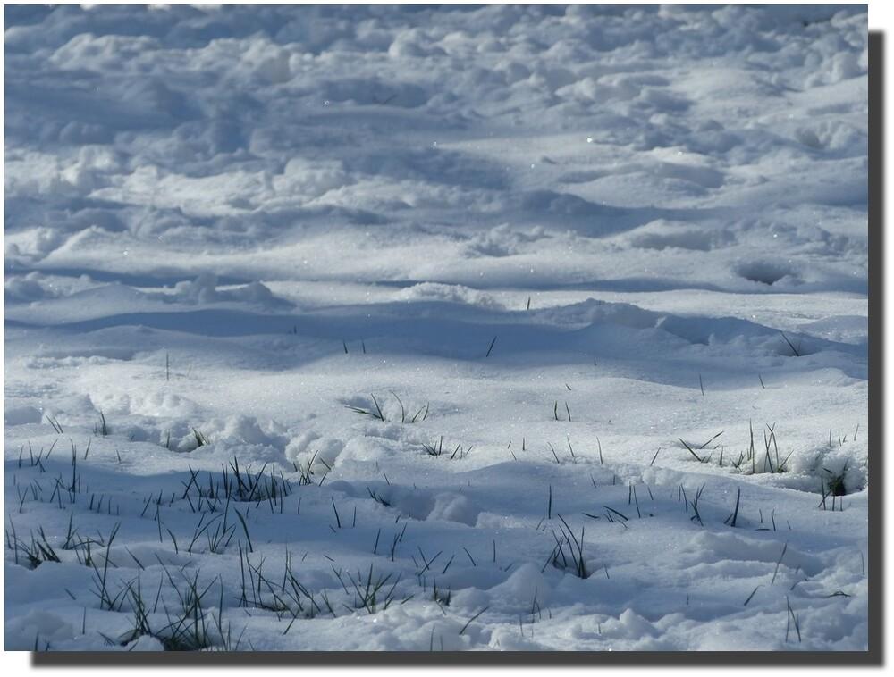 d'ailleurs j'aperçois un filet d'eau entre le sol neigeux et le ciel nuageux...
