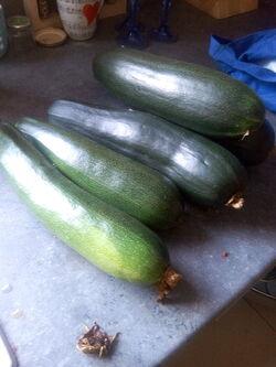 Poêlée pommes de terre nouvelles et courgette, à l'ail et oignon
