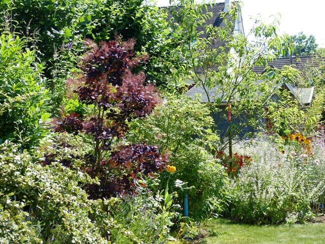 Le Jardin de Bernic