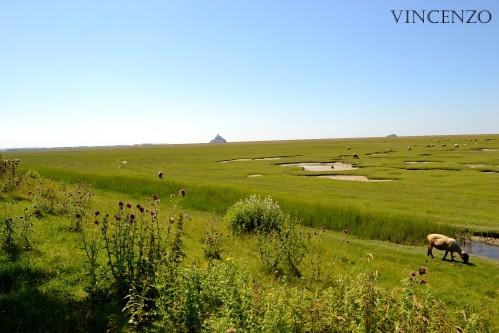 Normandie mont saint michel deux 815