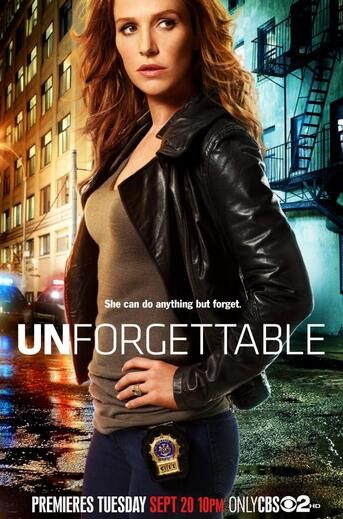 Unforgettable, saison 1