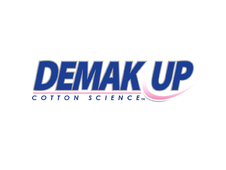 [test] : Demak'Up Expert (part 1)