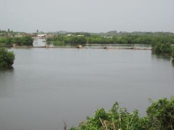 Bénin Lagune d'Ouidha
