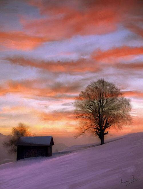 Coucher de soleil en hivers