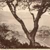 monaco vue générale 1923