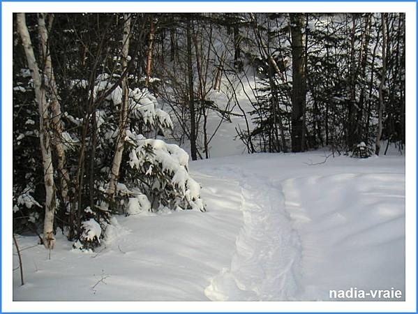 nadia-vraie--1-_GF.jpg